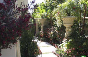 طراحی باغ و حیاط